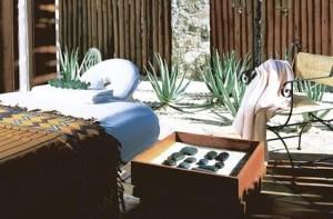 masaje-cactus